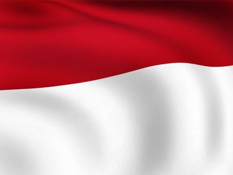 Tidak Semua Merah Putih Bendera Negara, Fahmi Tidak Melecehkan