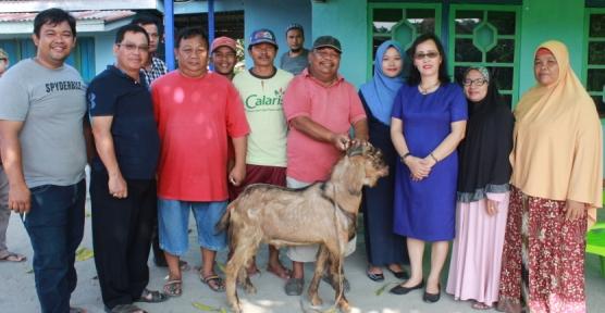 Wakil Bupati Sintang Sumbang 3 Ekor Kambing Untuk Hewan Qurban Warga