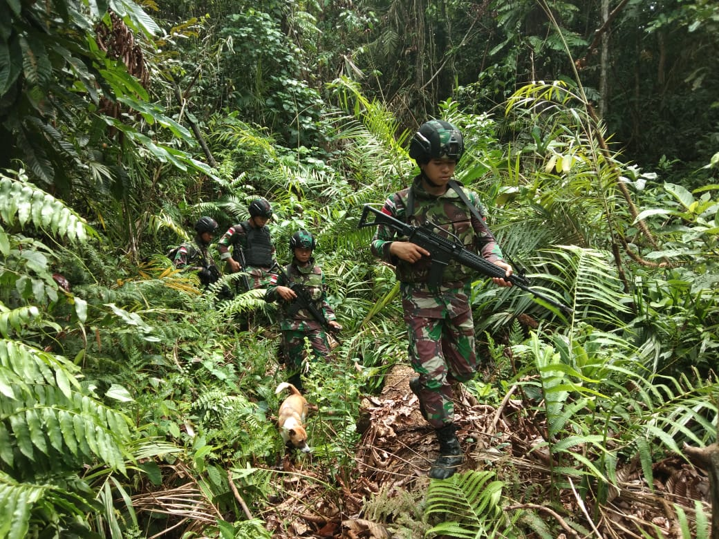Menjaga Stabilitas, Yonif Raider 300 Patroli Keamanan Hutan Papua