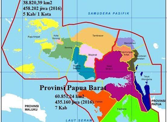 PRO -KONTRA DALAM  PROSES PEMEKARAN PROVINSI BARU WILAYAH  INDONESIA  TIMUR  KHUSUSNYA DAERAH  PAPUA