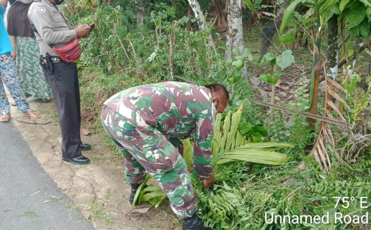 Babinsa Kodim 0311/Pessel Berdama Warga Bersihkan  Jalan Kampung